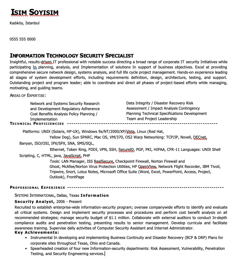 Bilişim CV Örnekleri