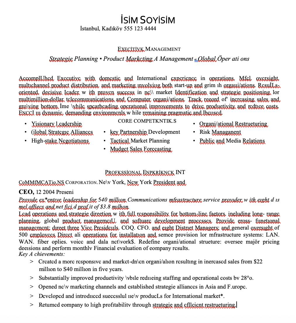 Executive CEO CV Örneği