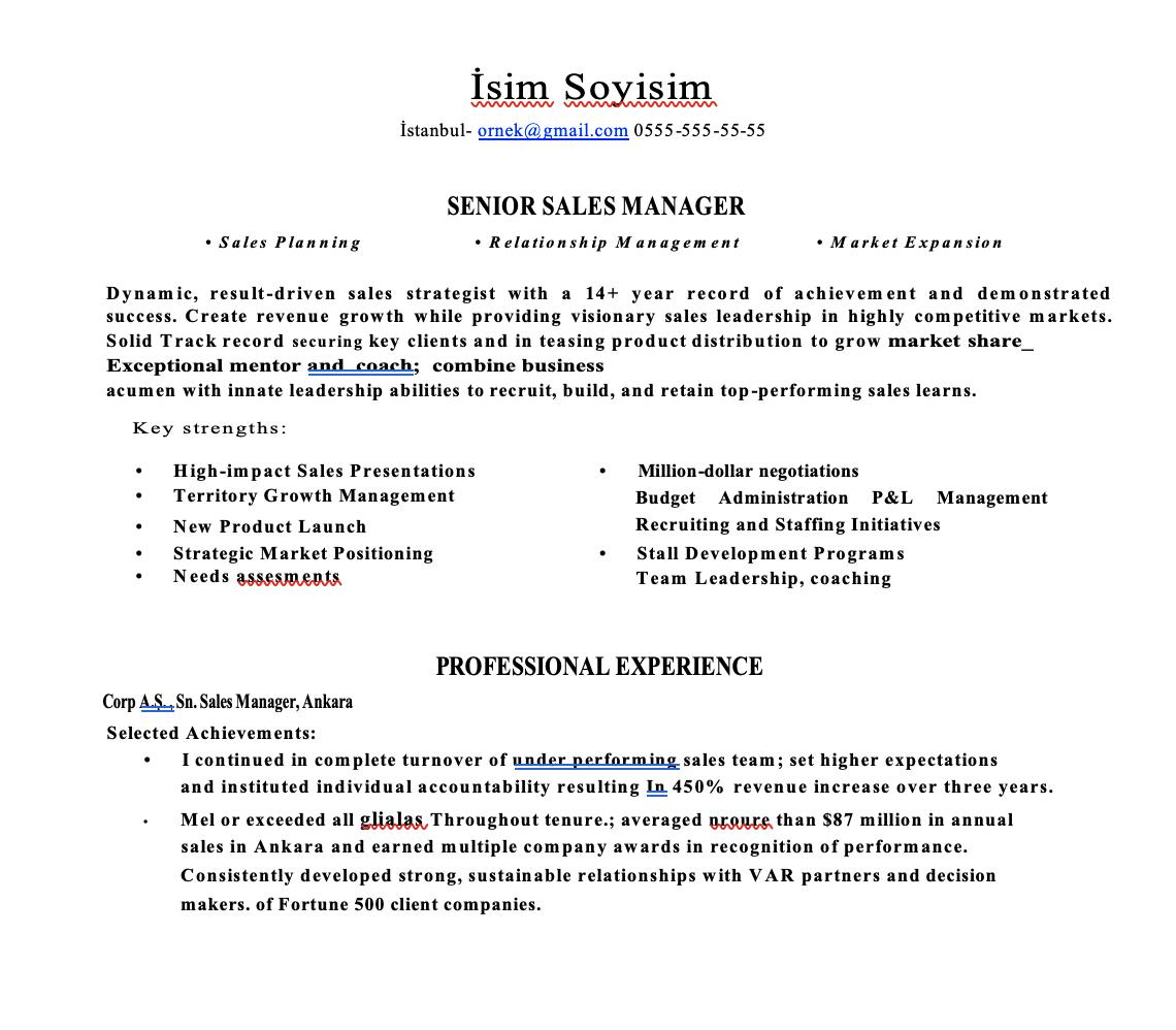 Satış CV Örnekleri